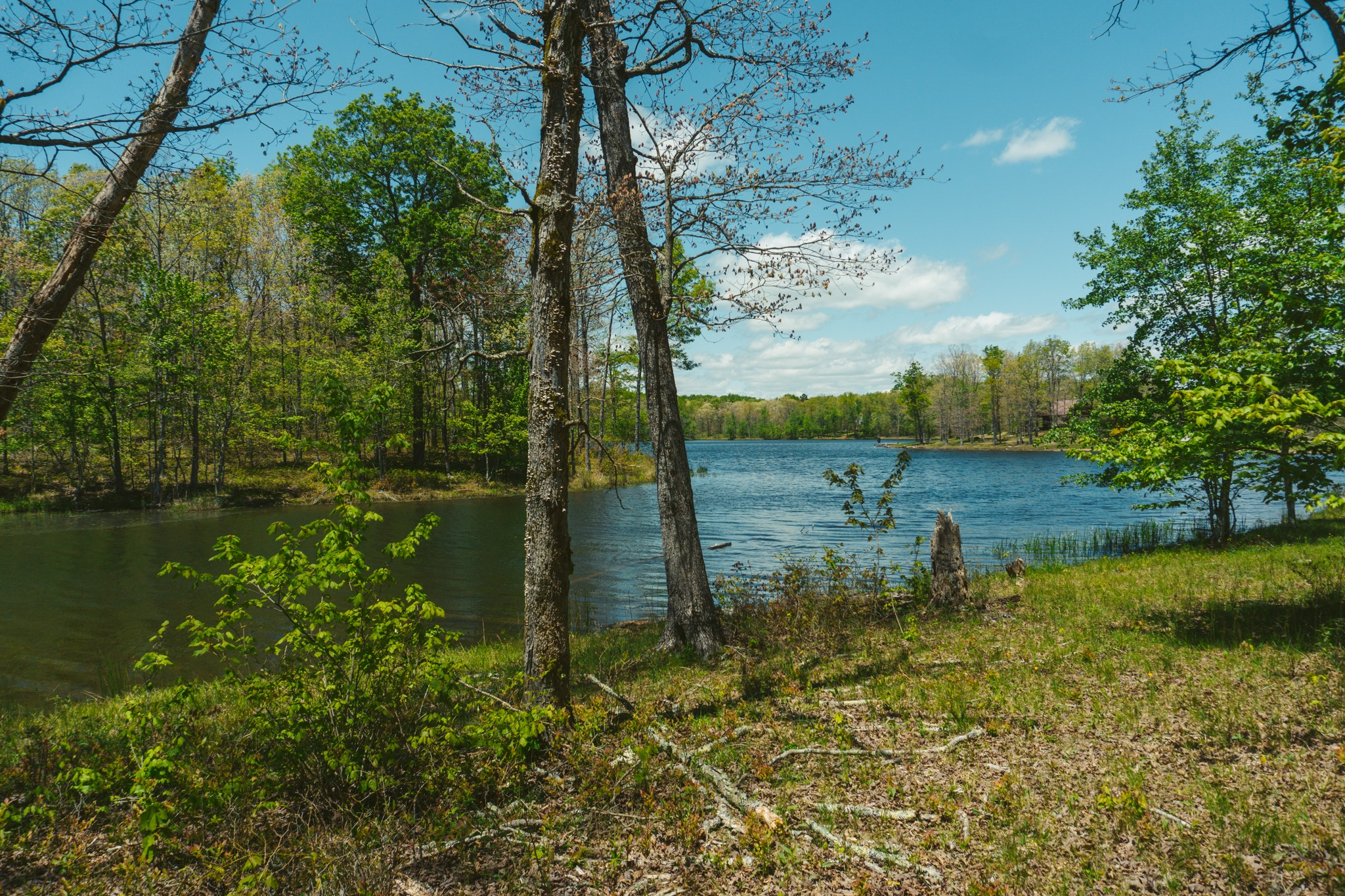 0 Long Branch Rd Property Photo - Spencer, TN real estate listing