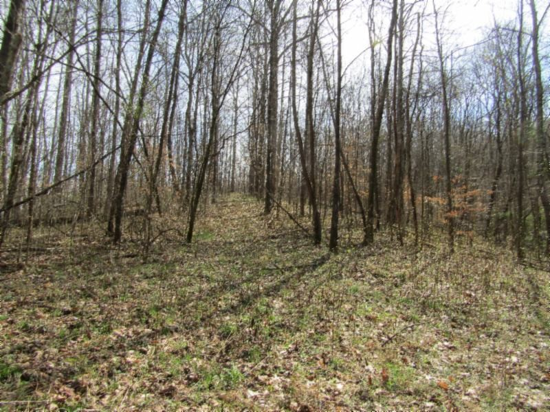 0 Mud Hollow Rd Property Photo - Hendersonville, TN real estate listing