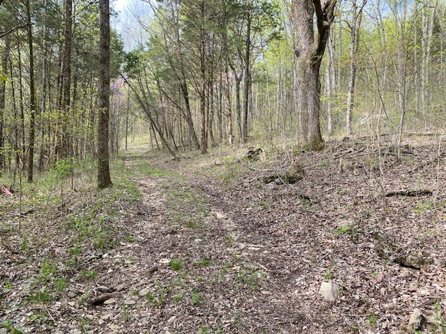 1 Ward Hollow Road Property Photo - Brush Creek, TN real estate listing