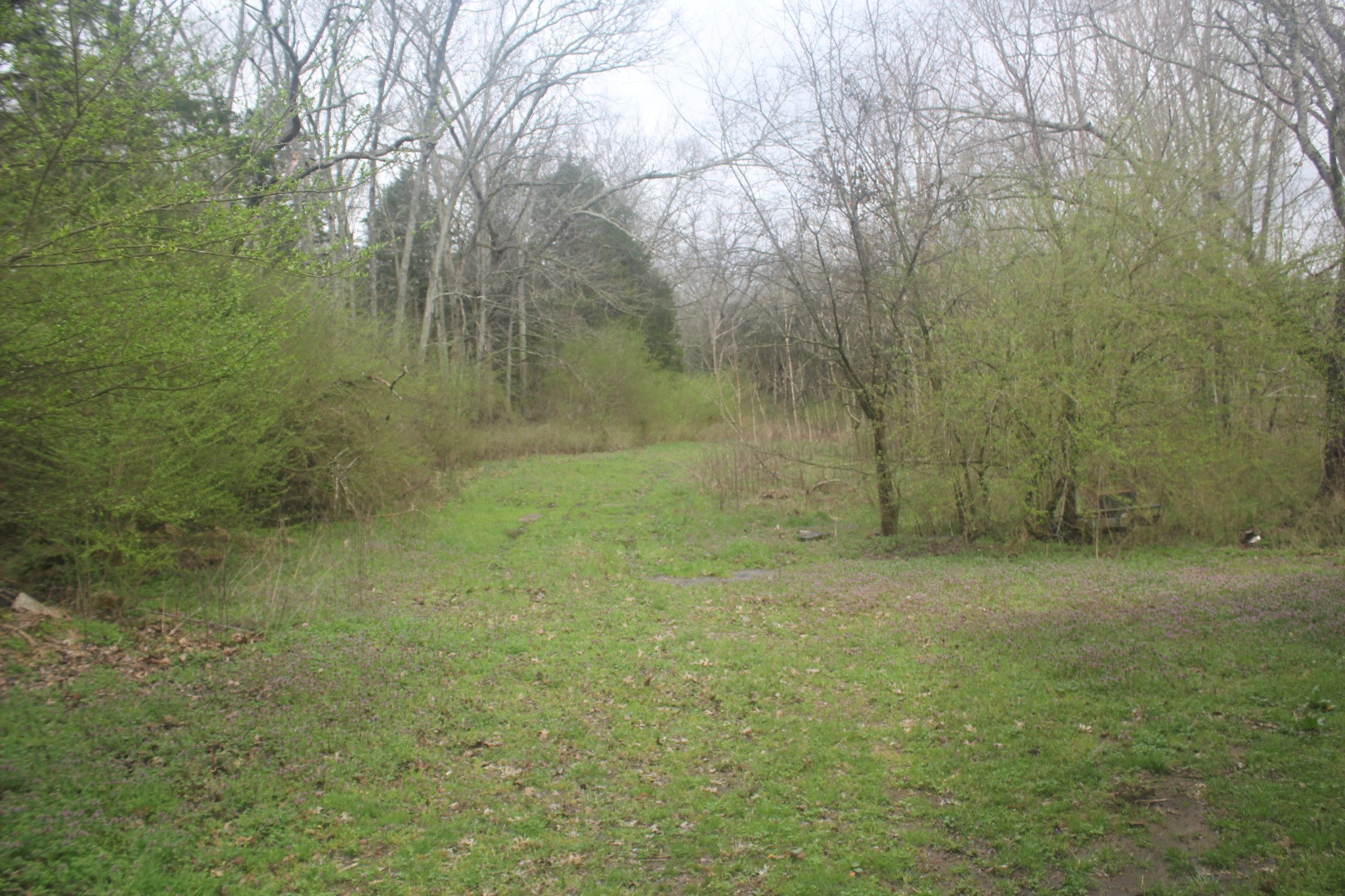 0 Adgent Rd Property Photo - Chapel Hill, TN real estate listing