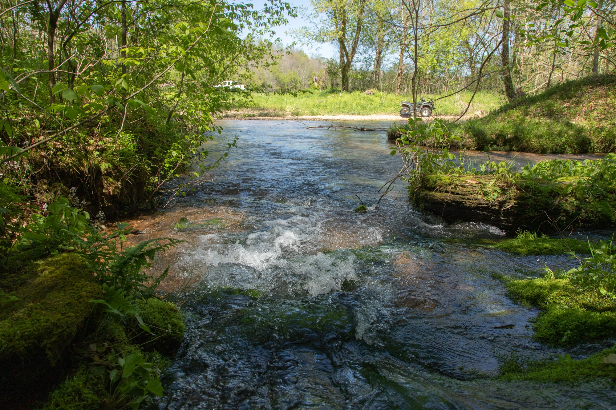 7262 Sinking Creek Rd Property Photo - Linden, TN real estate listing
