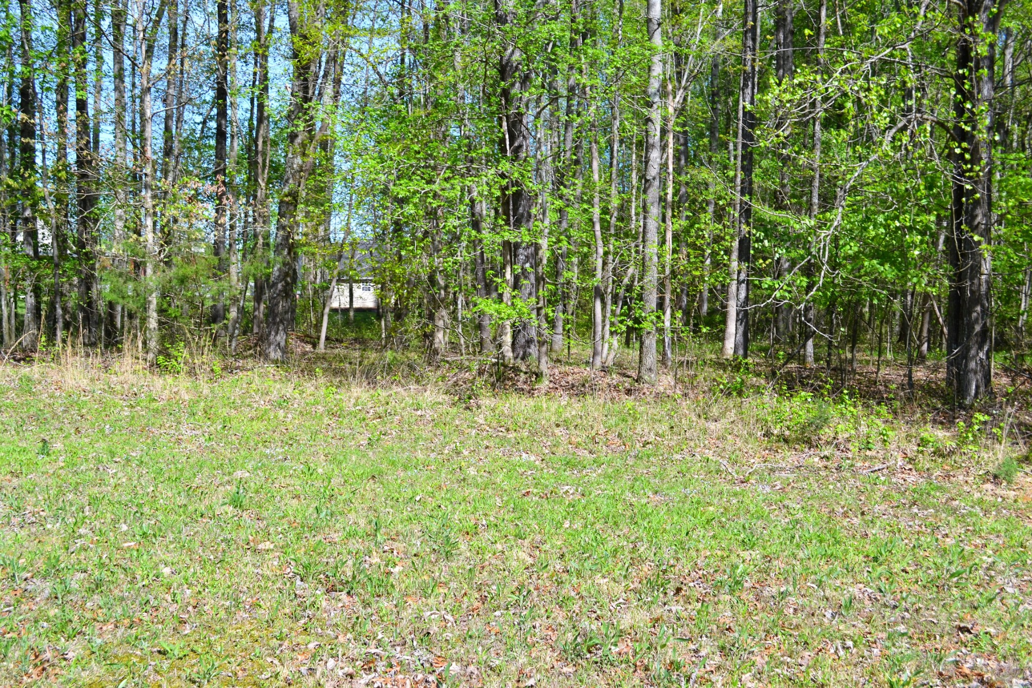 0 Sonoma Dr Property Photo - Fayetteville, TN real estate listing