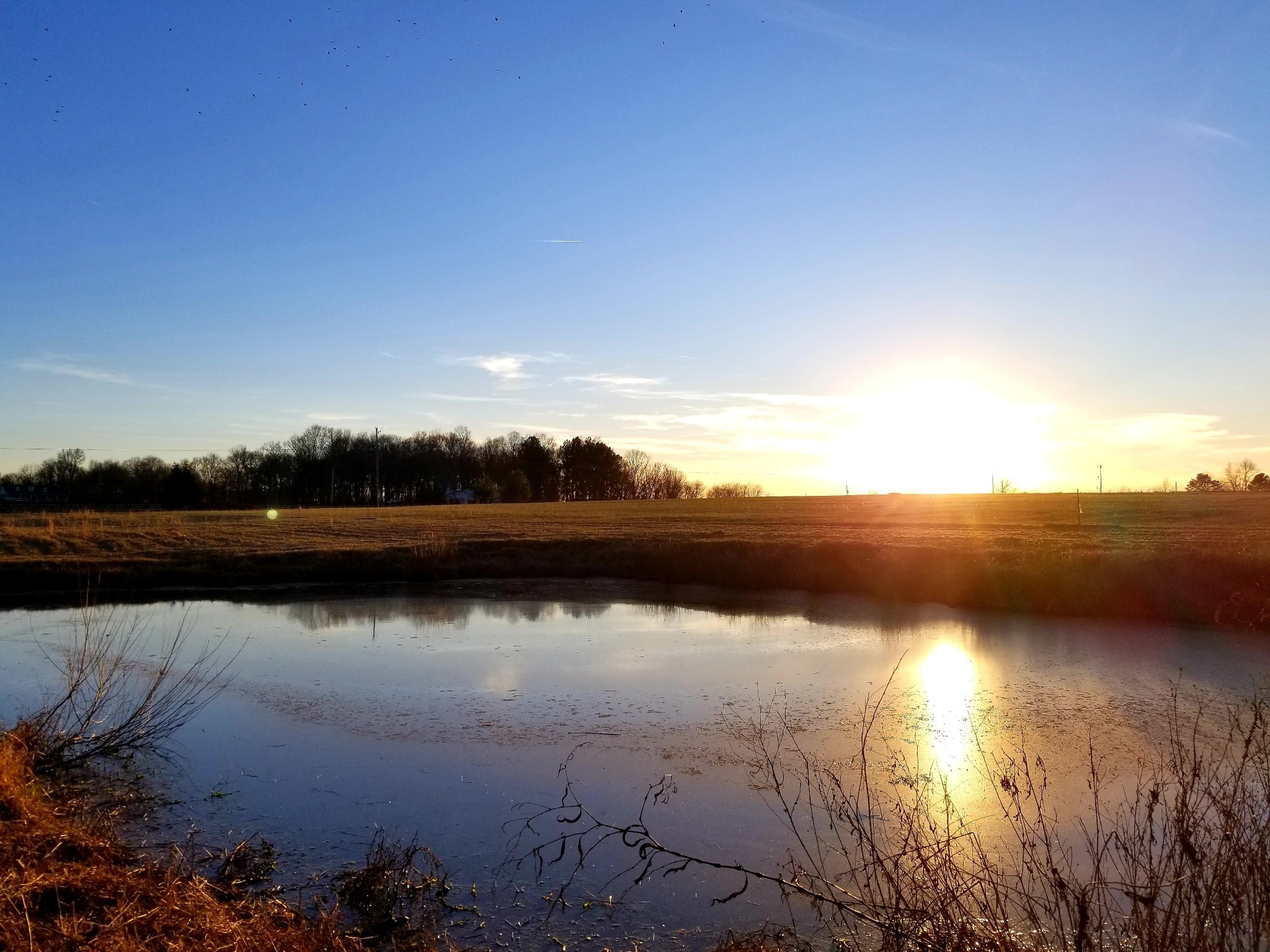 0 W Hester Rd Lot 8, Cottontown, TN 37048 - Cottontown, TN real estate listing