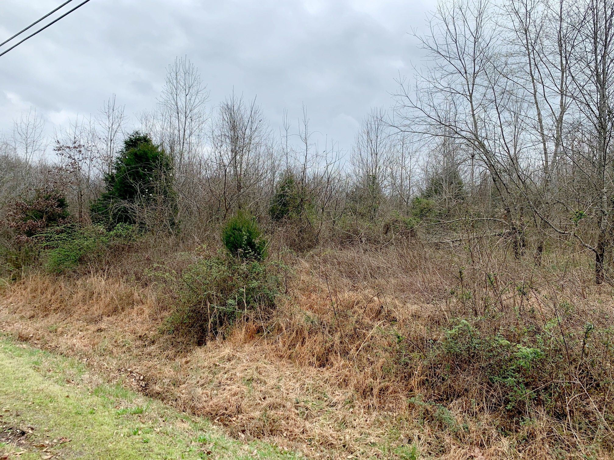 2415 Toler Rd Property Photo - Woodlawn, TN real estate listing