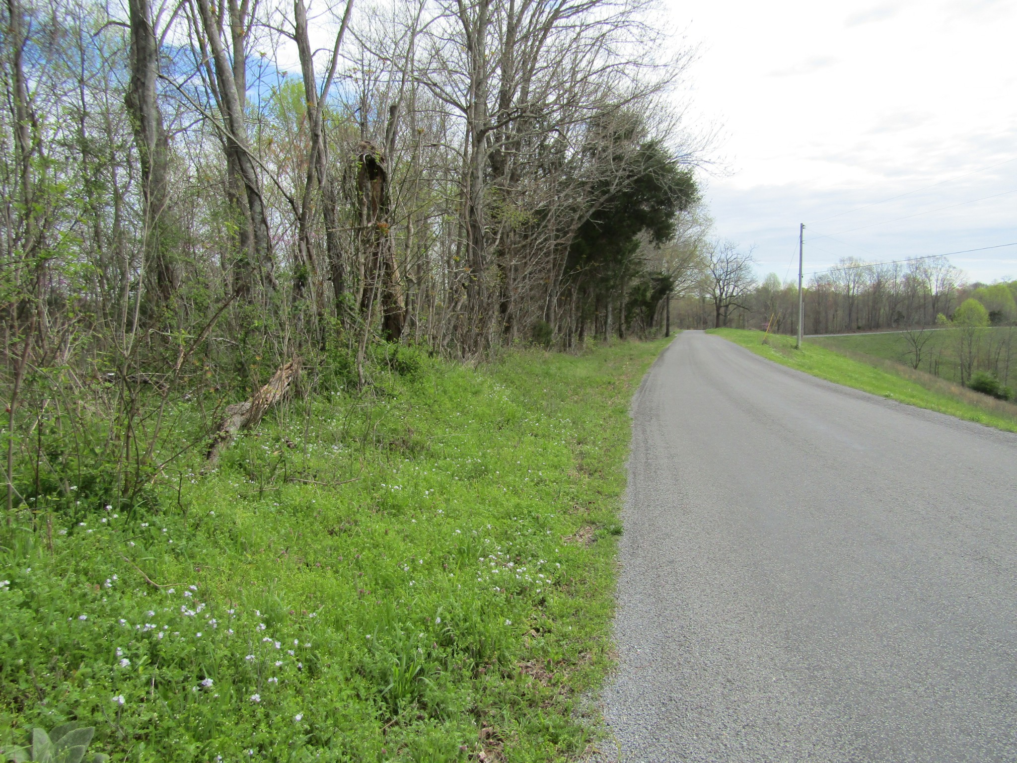 40 ac Haydenburg Rd, Whitleyville, TN 38588 - Whitleyville, TN real estate listing