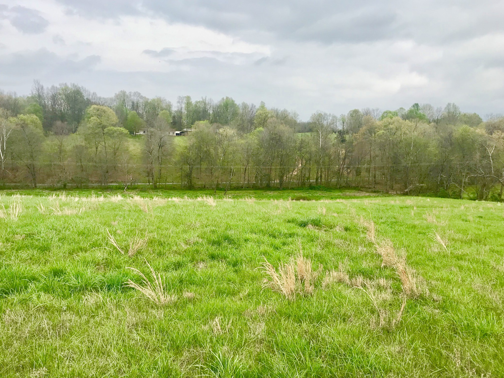 0 Rogues Fork Rd. Property Photo - Bethpage, TN real estate listing