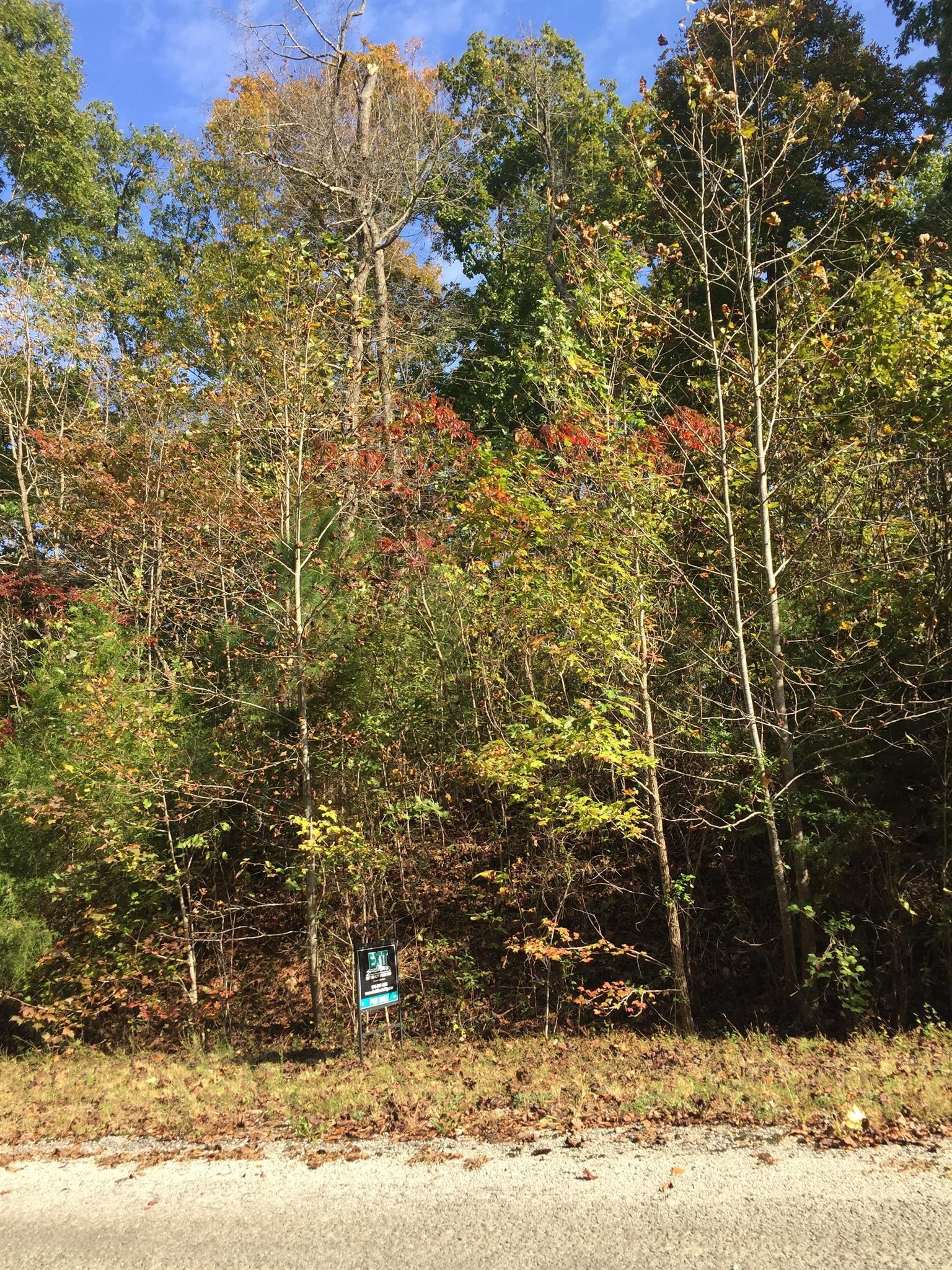 0 Links Bend Way N Property Photo - Springville, TN real estate listing