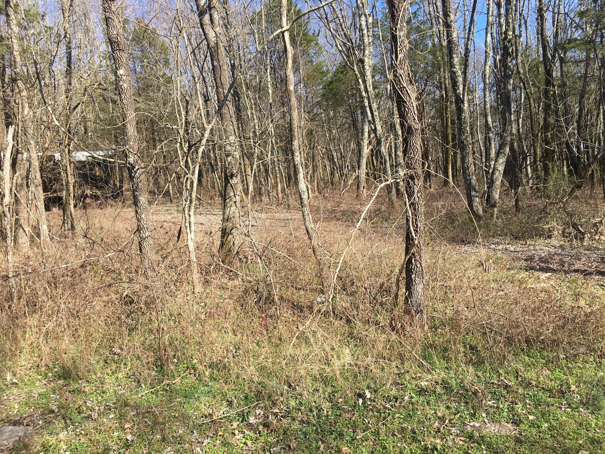 0 Barlow Lane Property Photo - Lascassas, TN real estate listing