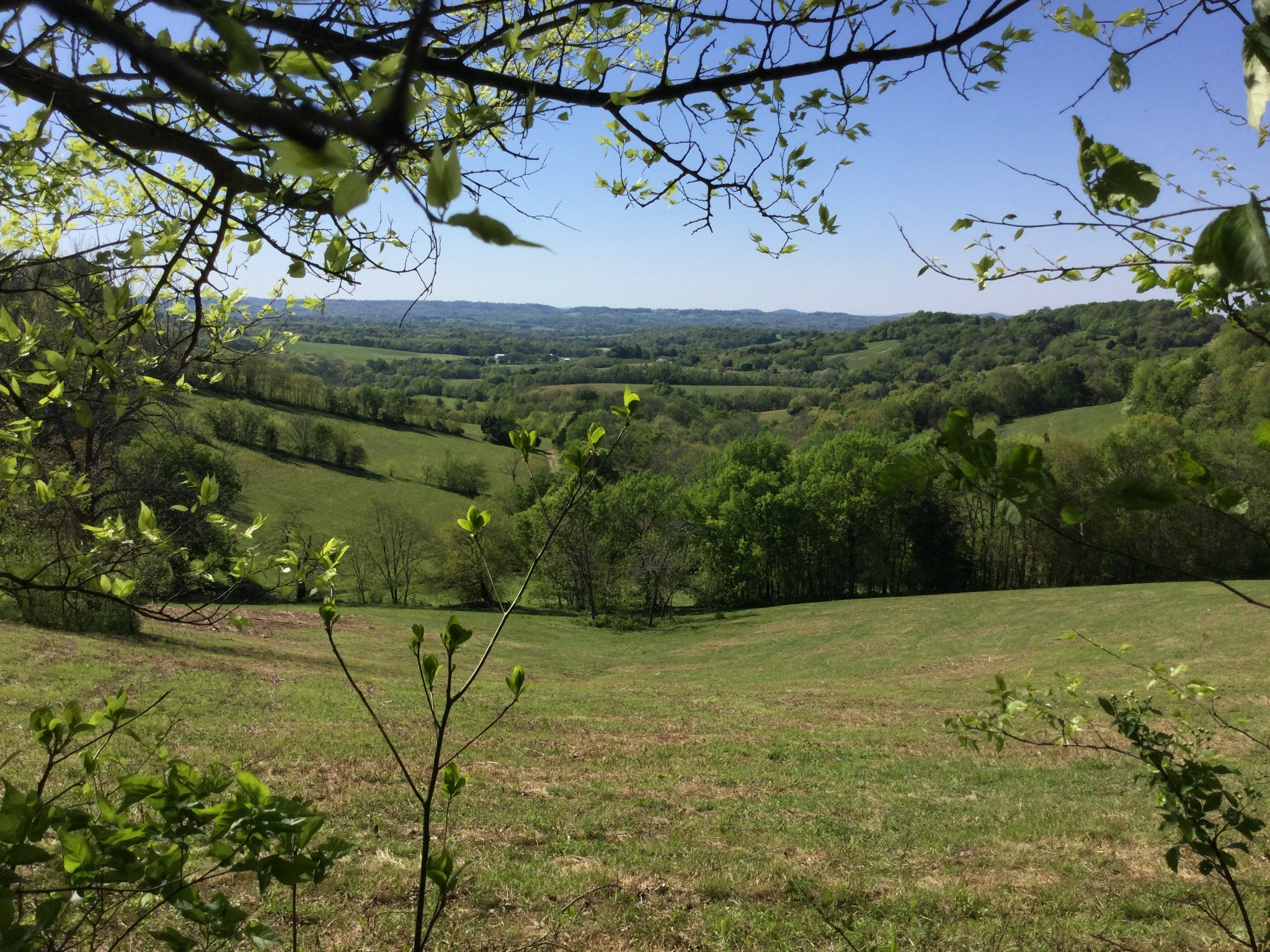 2131 Firetower Rd Property Photo - Lewisburg, TN real estate listing