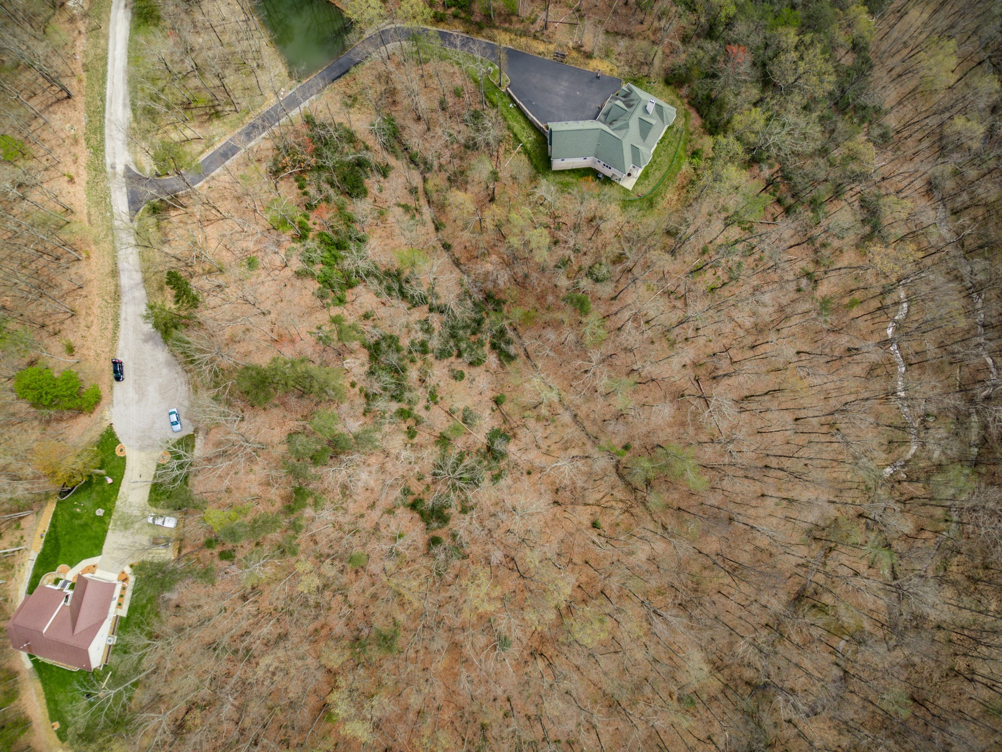 0 Scenic Place Property Photo - Monterey, TN real estate listing