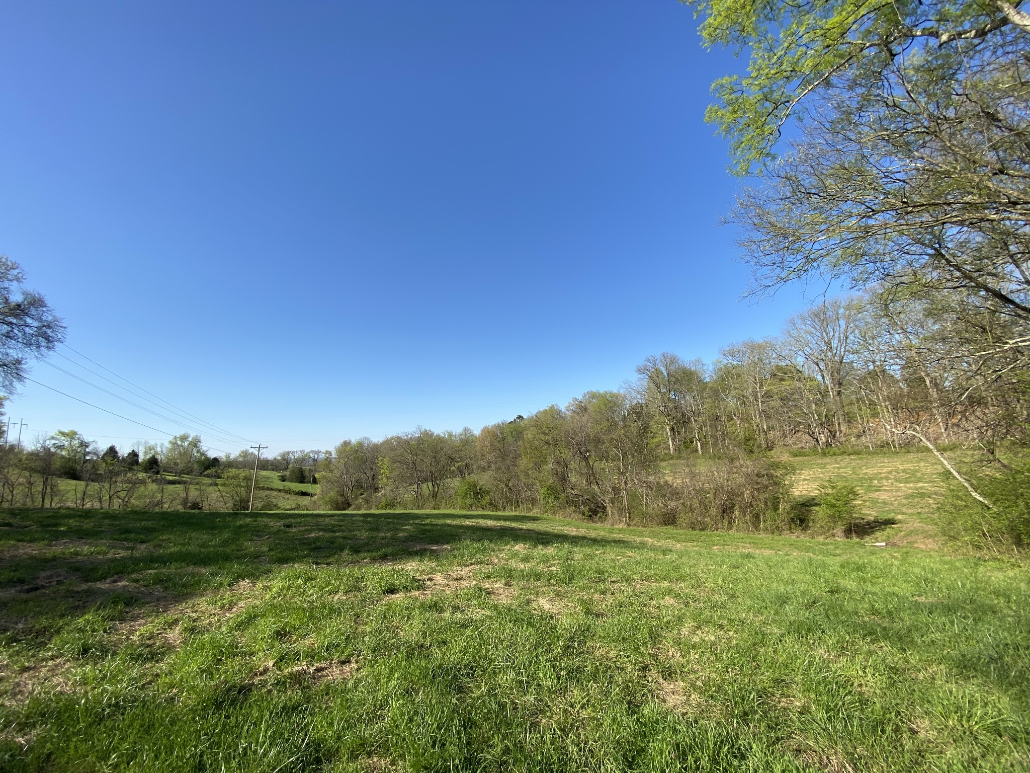 0 Mobley Ridge Rd Property Photo - Duck River, TN real estate listing