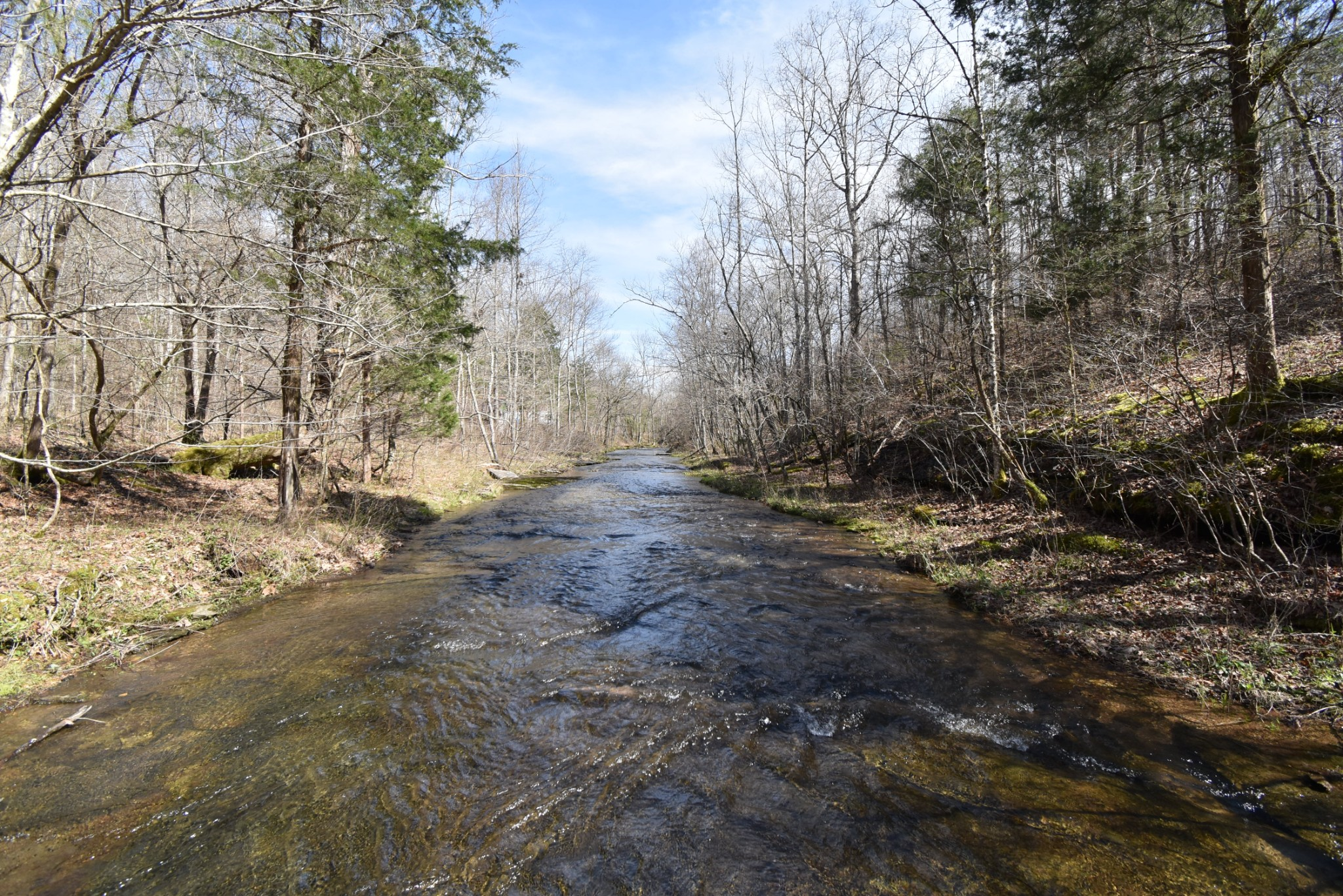 0 Hwy 412, E Property Photo - Linden, TN real estate listing