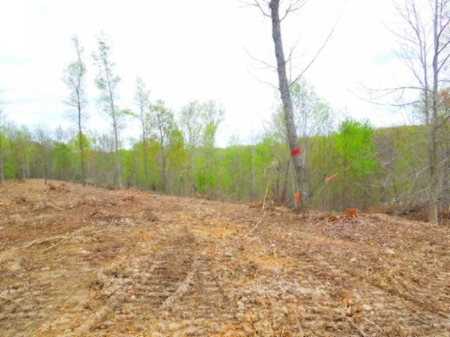 15 .86ac Pleasant Cemetery Rd Property Photo - Gainesboro, TN real estate listing