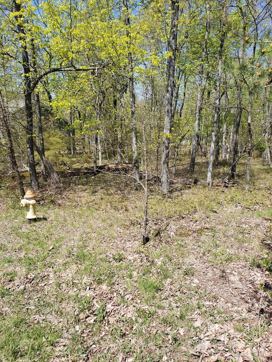 0 Bent Oak Ln Property Photo - Crossville, TN real estate listing