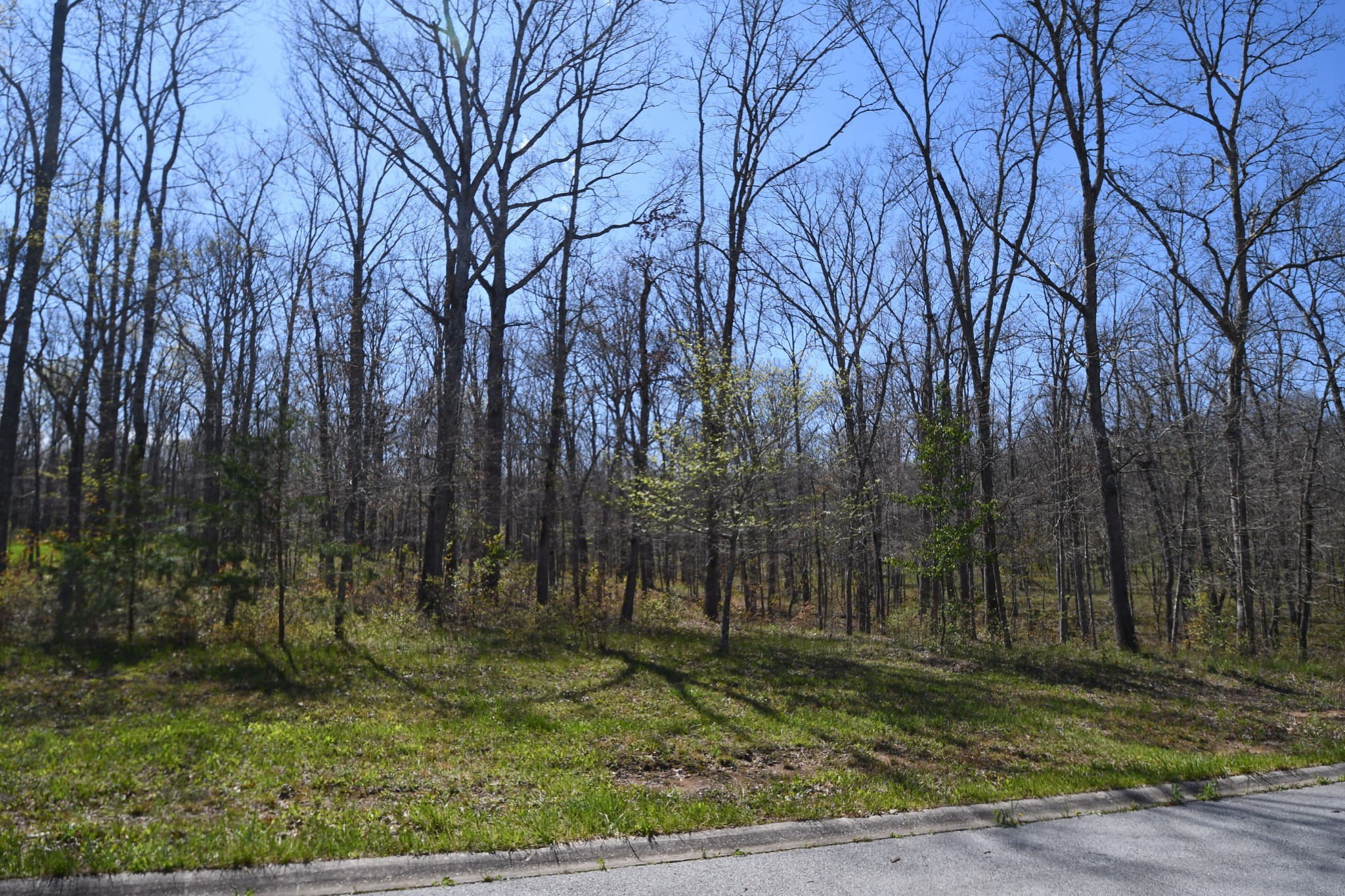 419 Riverchase Drive Property Photo - Crossville, TN real estate listing
