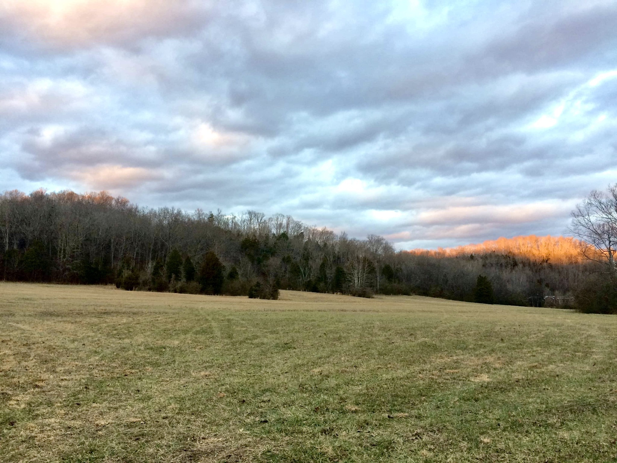 2 Little Pond Creek Rd., Pegram, TN 37143 - Pegram, TN real estate listing