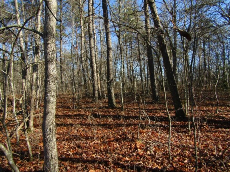 19 N Lake Trail Property Photo - Monterey, TN real estate listing