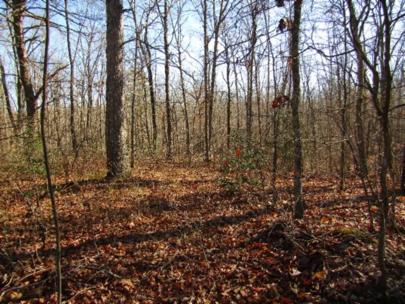 32 Anne Rd Property Photo - Monterey, TN real estate listing