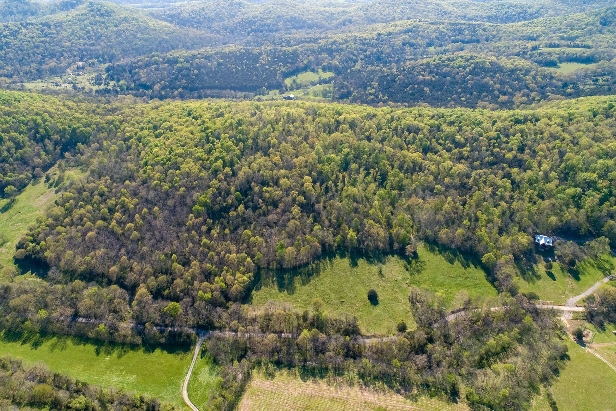 1 Patton Hollow Road Property Photo - Watertown, TN real estate listing