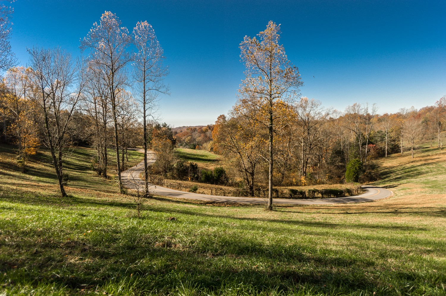 0 Red Tuttle Rd Property Photo - Bethpage, TN real estate listing