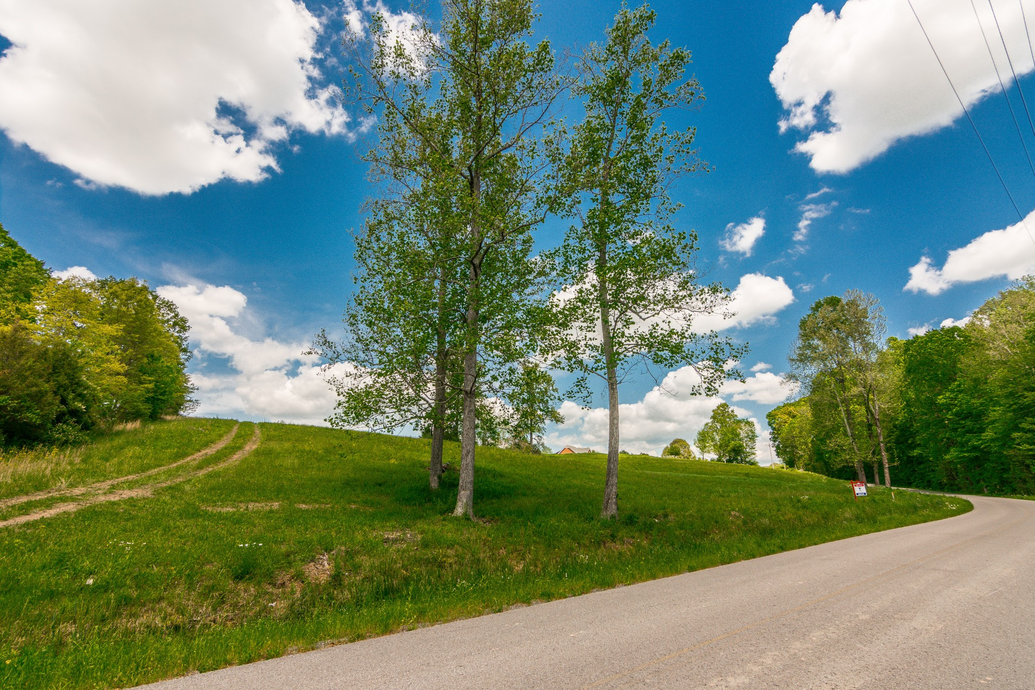 0 Smith Thompson Rd. Property Photo - Bethpage, TN real estate listing