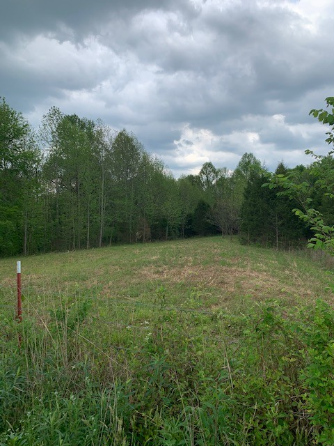 0 Dry Rock Road Property Photo - Westmoreland, TN real estate listing