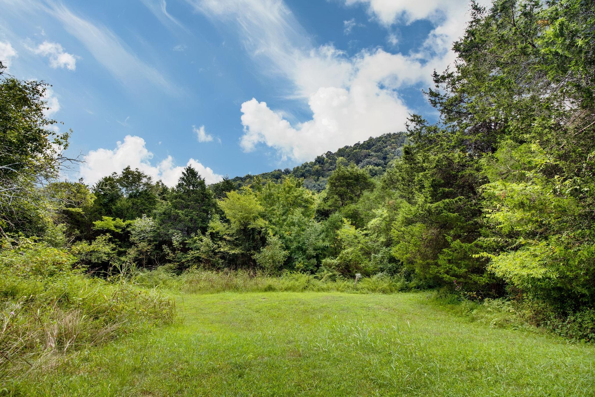 0 Honey Prong Rd Property Photo - Hartsville, TN real estate listing