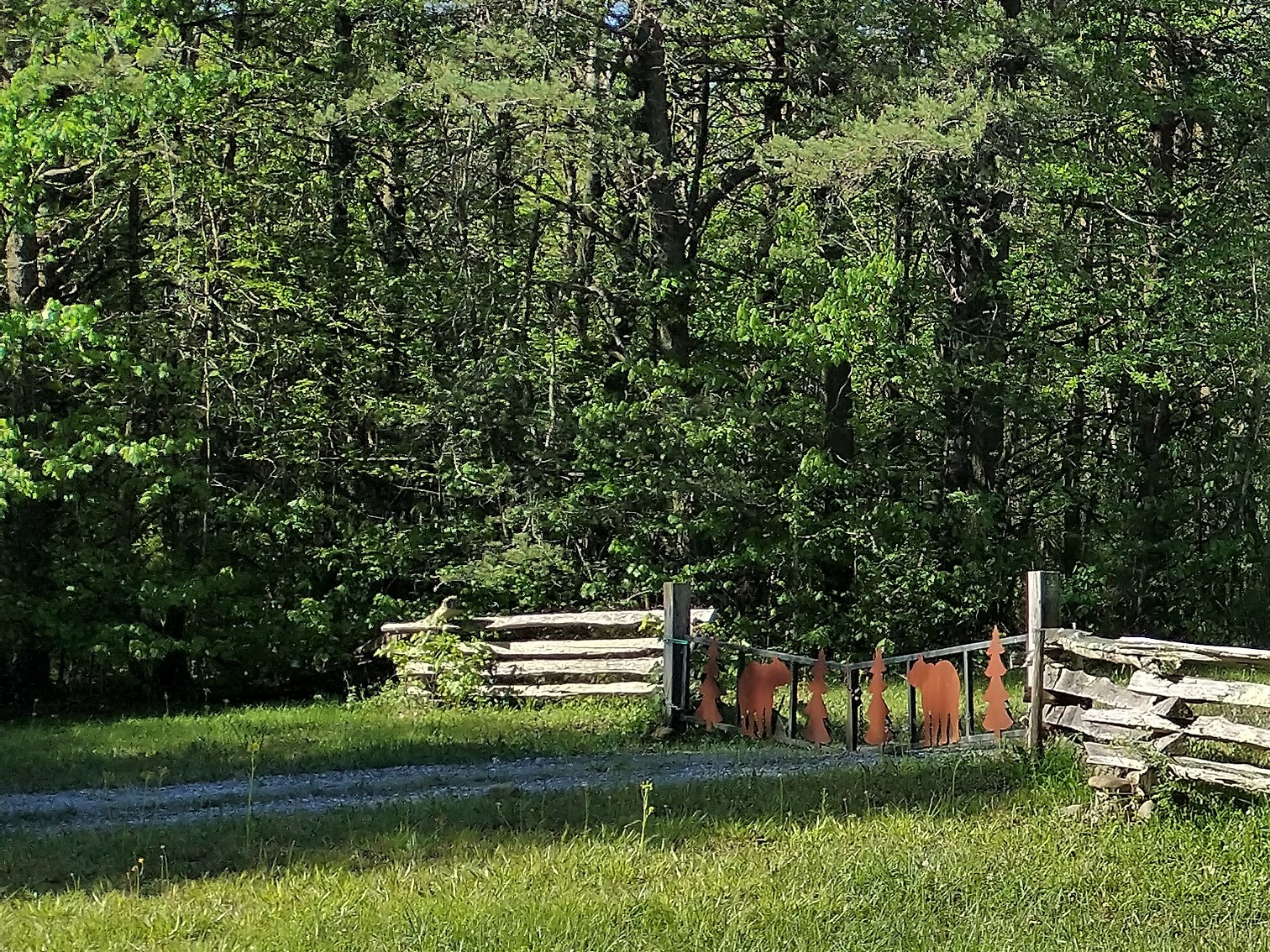 43 Bluff Woods Property Photo - Altamont, TN real estate listing