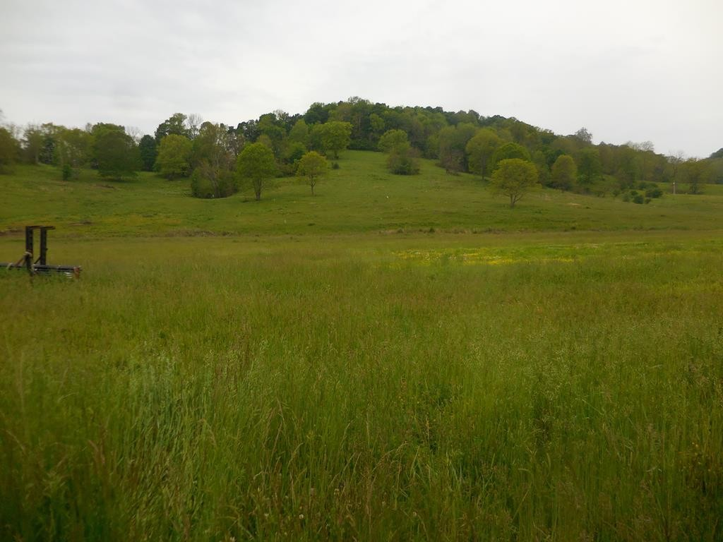 0 Dean Hill Rd Property Photo - Pleasant Shade, TN real estate listing