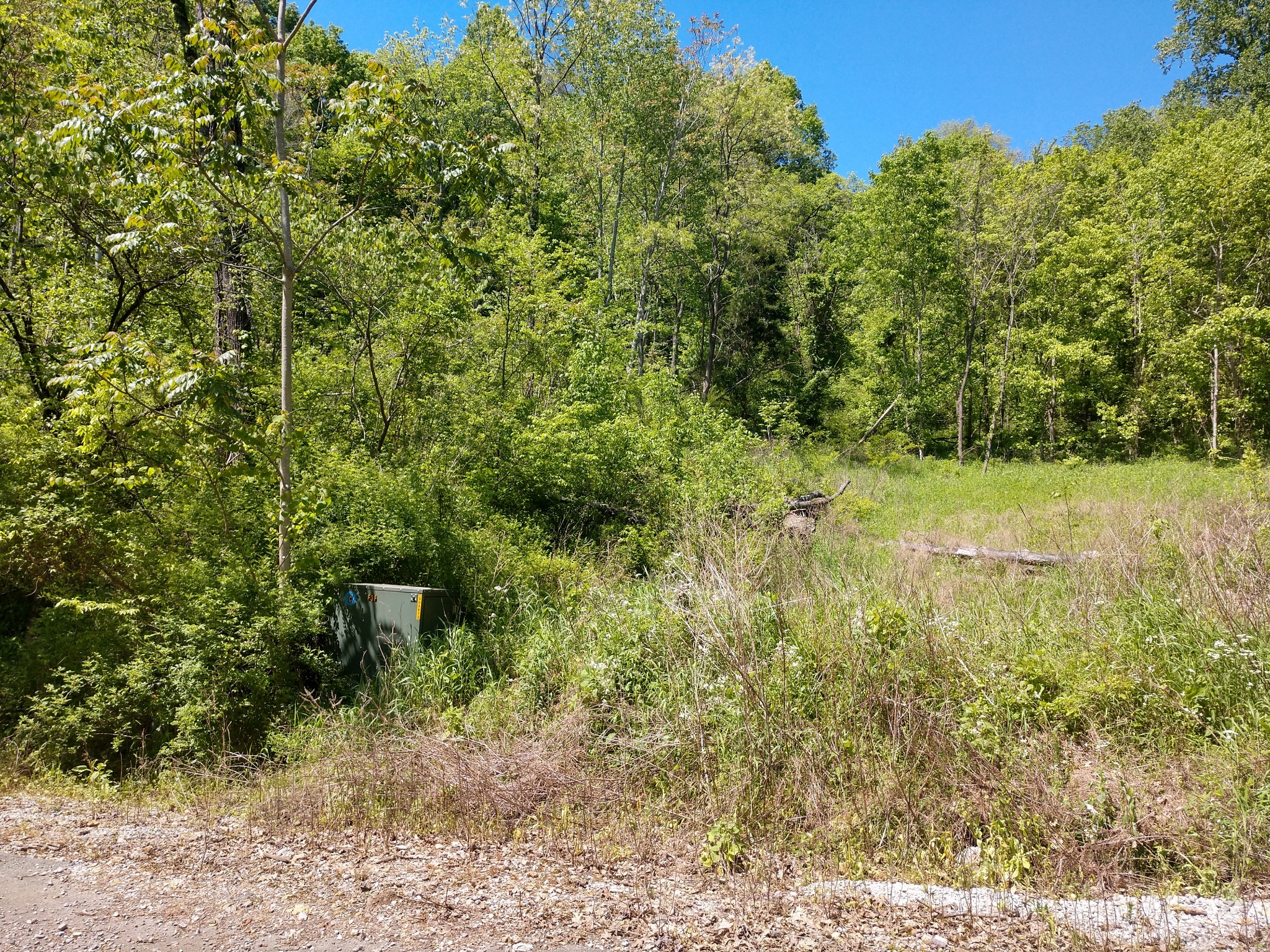 1 Park Dr Property Photo - Silver Point, TN real estate listing