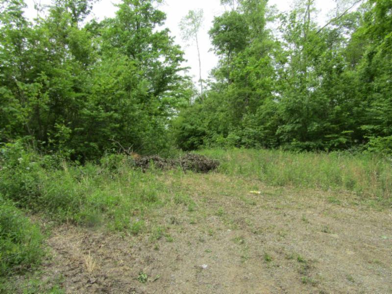 2 White Oak Ridge Property Photo - Celina, TN real estate listing