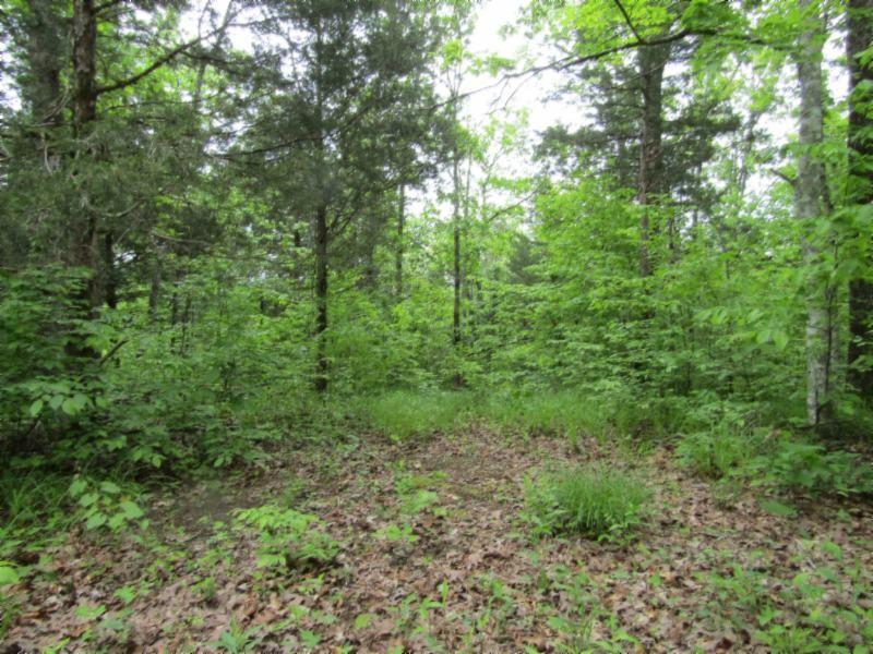 5 White Oak Ridge Property Photo
