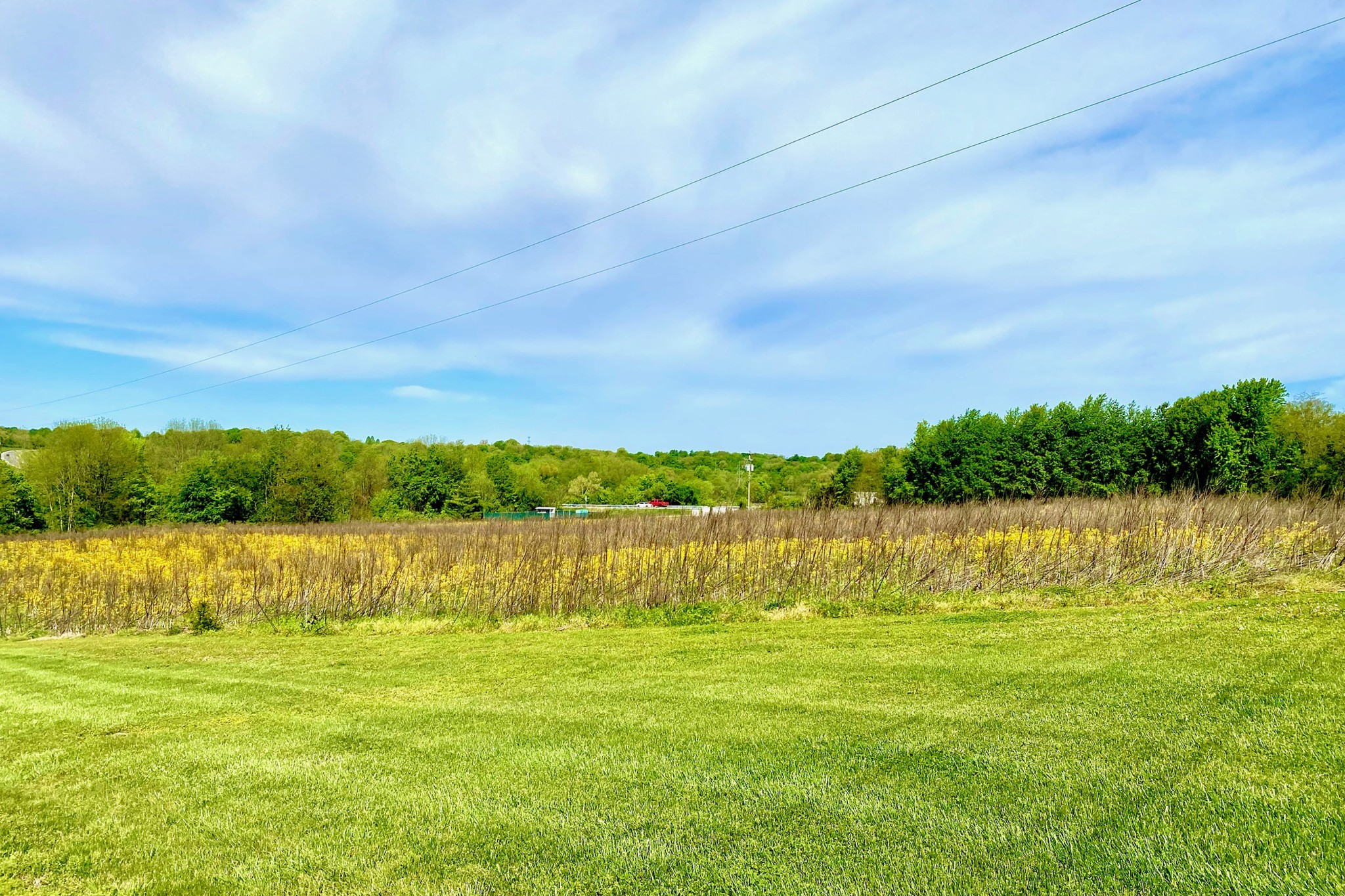 2000 Scottsville Road, Tract 2 Property Photo - Franklin, KY real estate listing