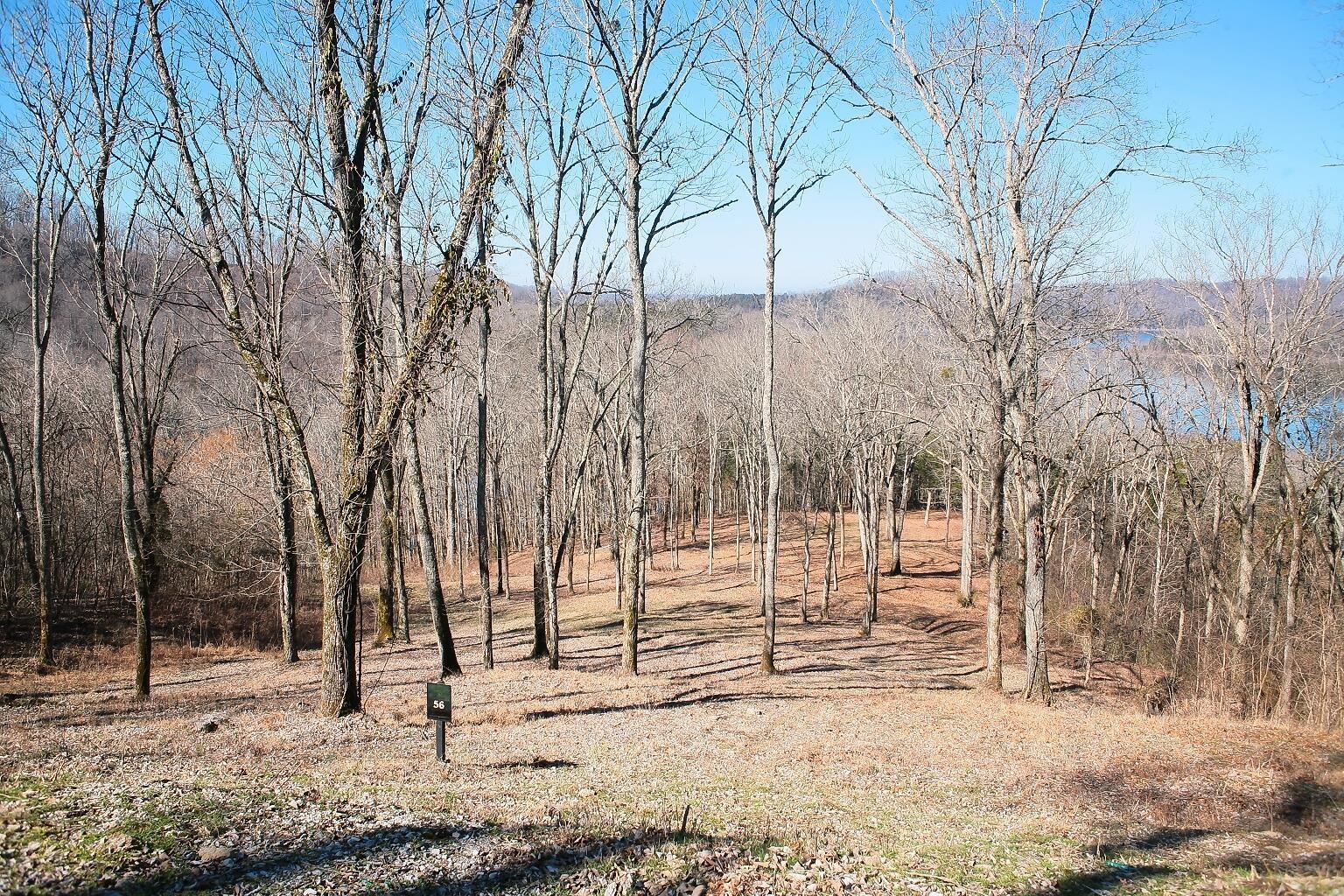 410 Wilson Cir Property Photo - Smithville, TN real estate listing