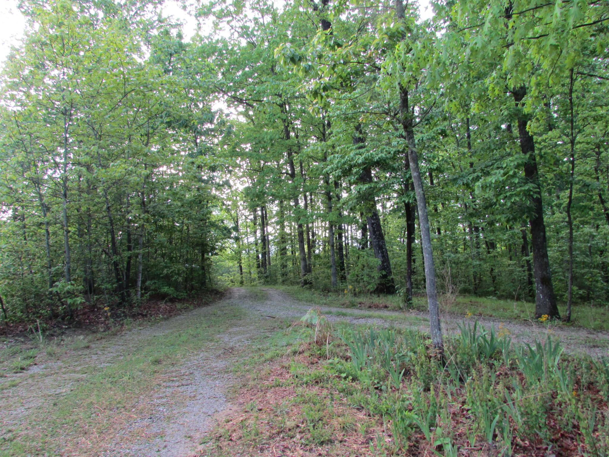 2213 Deer Run Rd Property Photo - Altamont, TN real estate listing