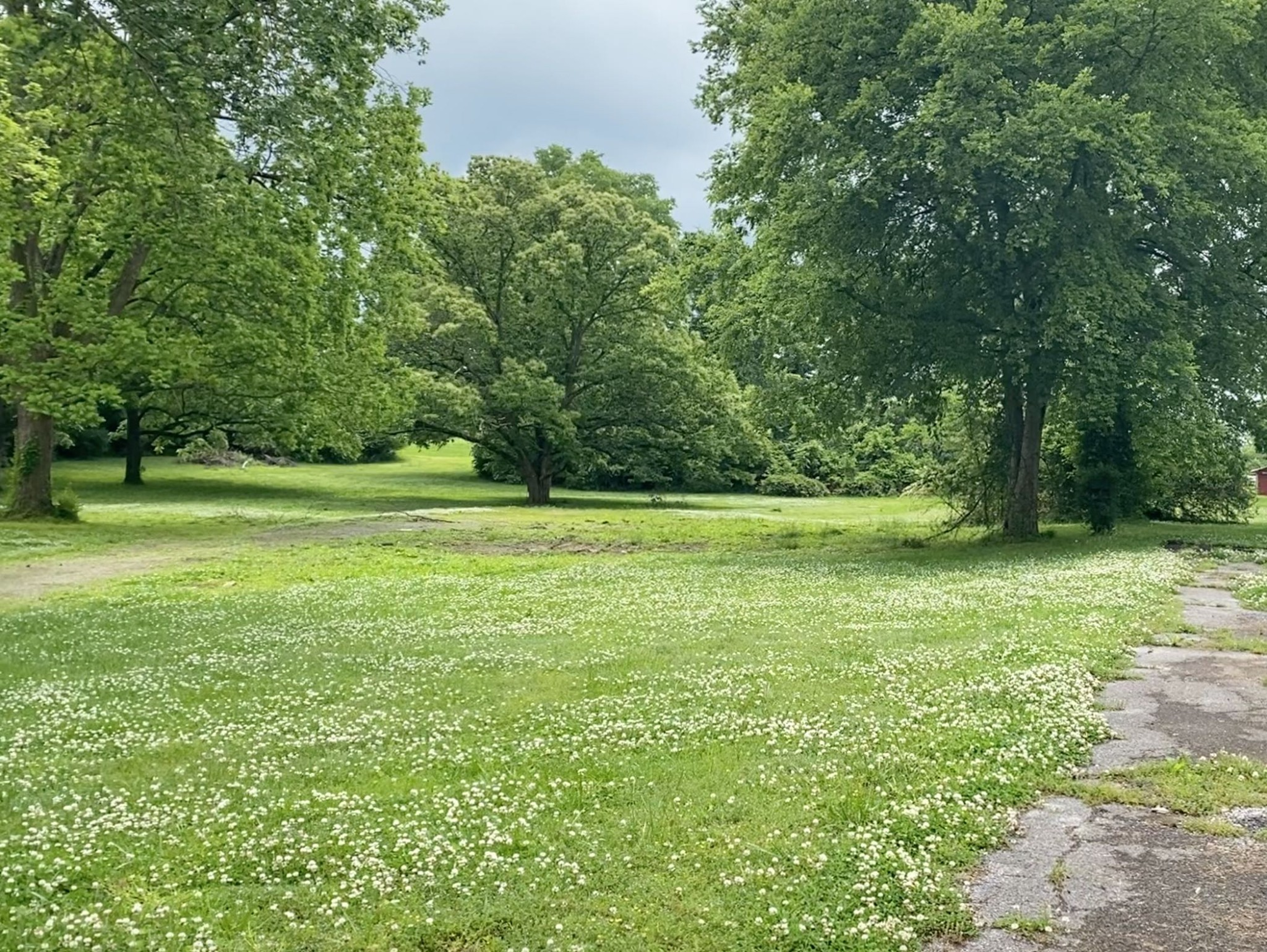 3036 Lakeshore Dr Property Photo - Old Hickory, TN real estate listing