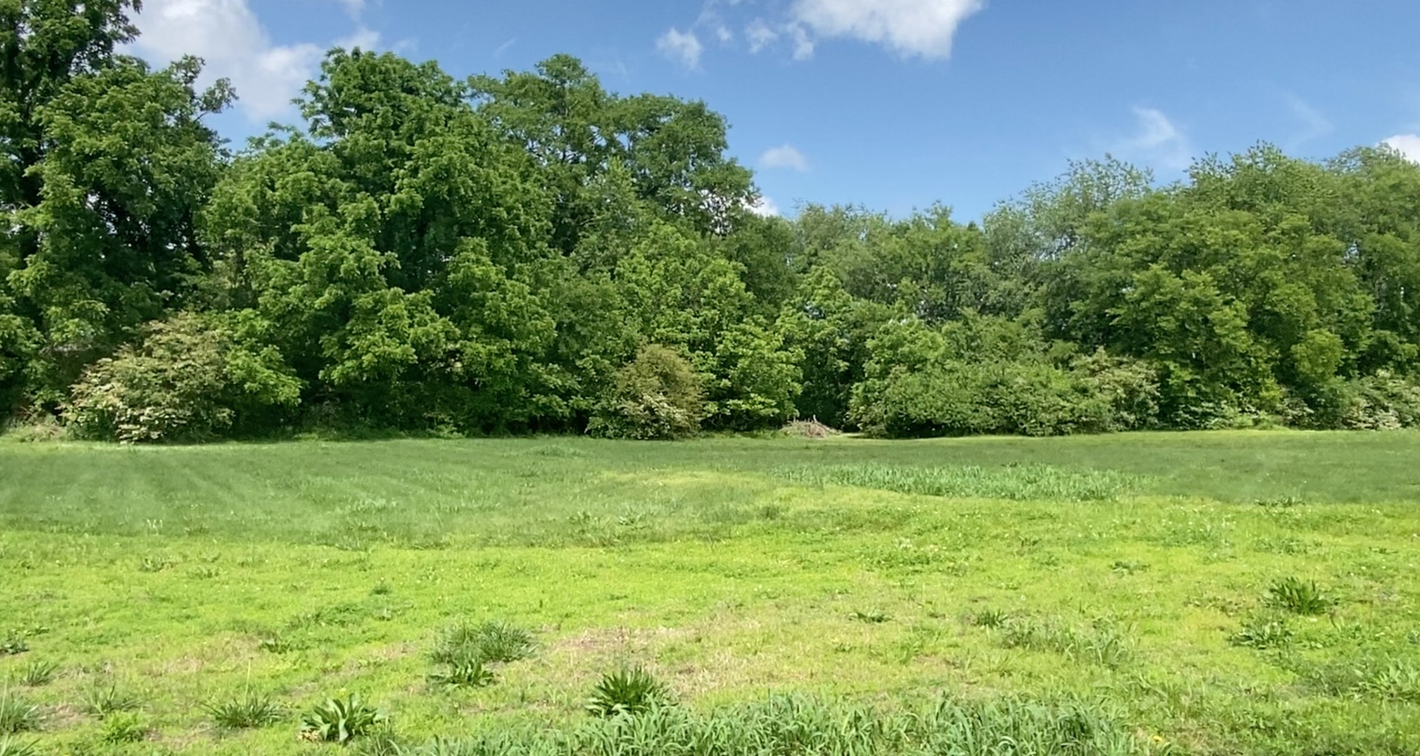 0 Iris Ave Property Photo - Old Hickory, TN real estate listing