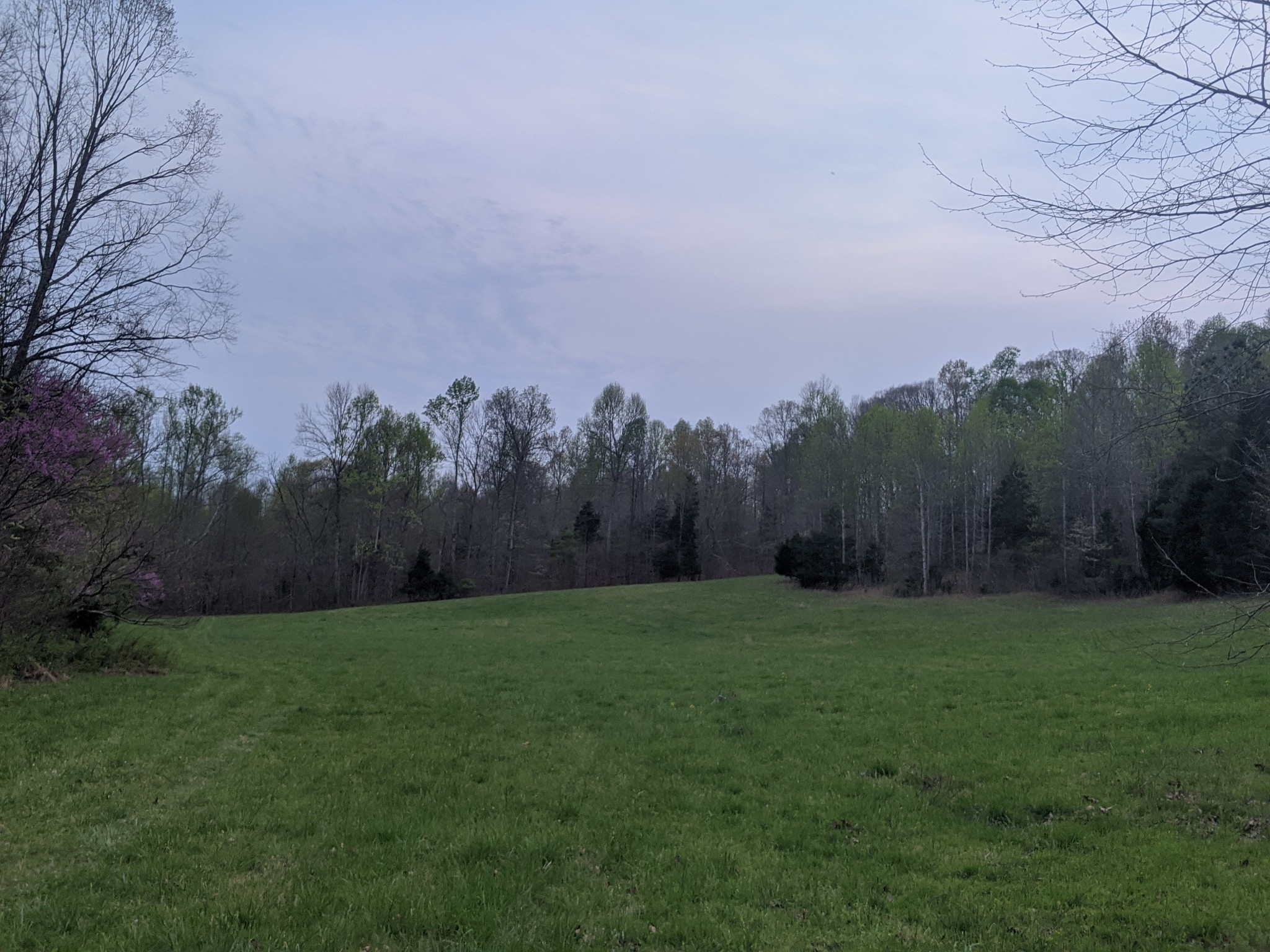 0 Spring Valley Rd Property Photo - Erin, TN real estate listing