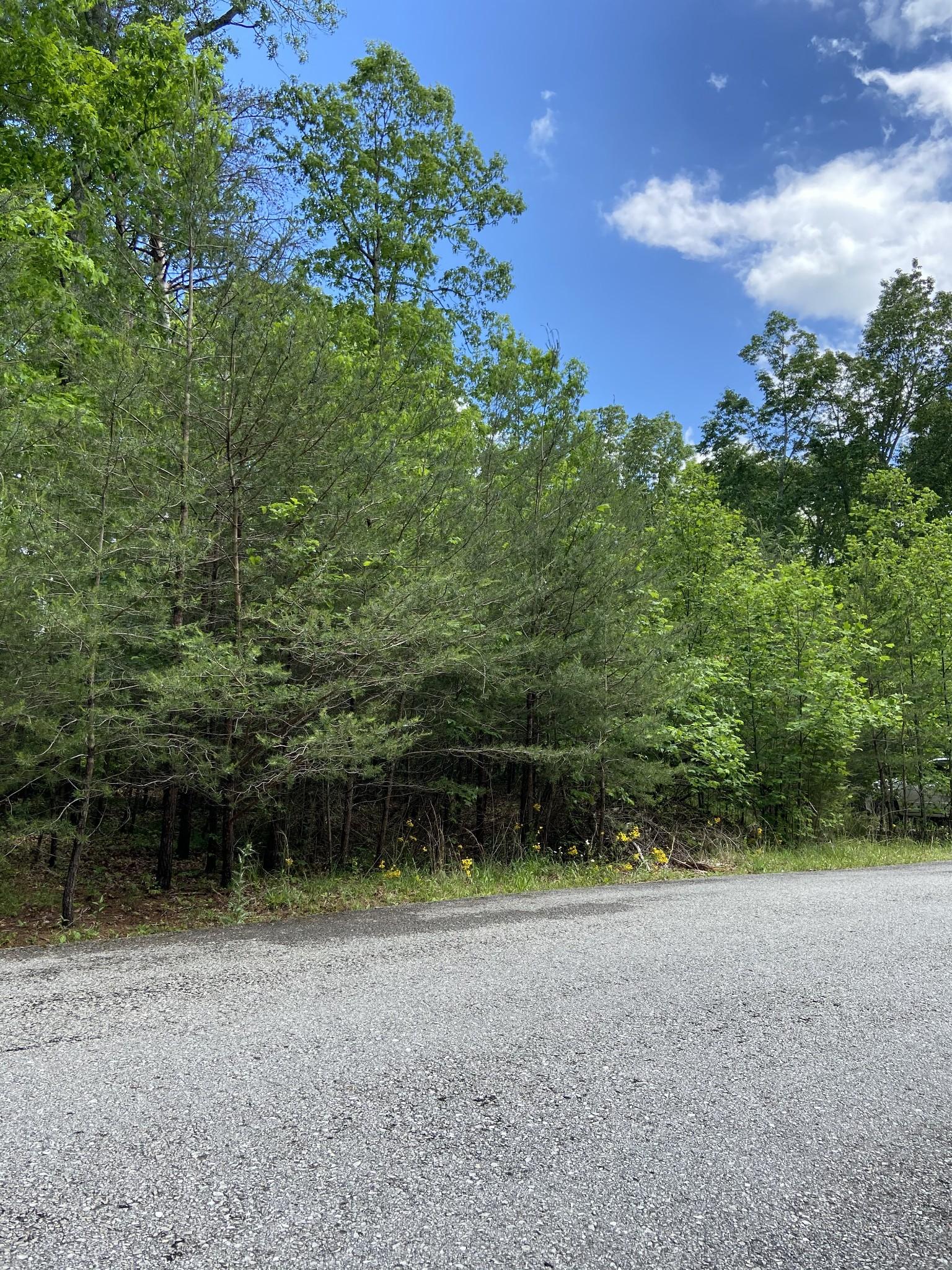 0 Ridge Wood Ln Lots 447&448 Property Photo