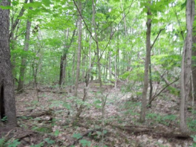 7 .70 Ac.Star Point Road Property Photo - Celina, TN real estate listing
