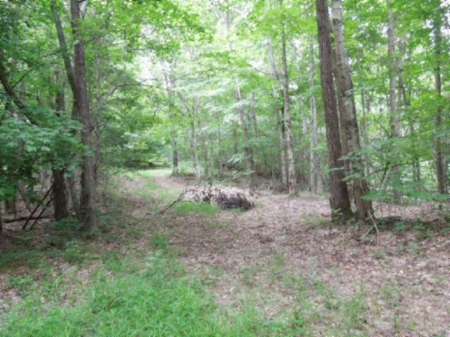 5 .19 Ac.star Point Road Property Photo
