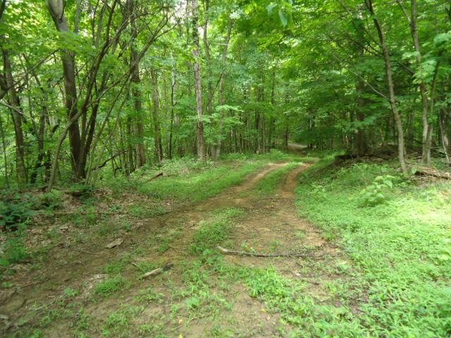 5 .52 Ac.Star Point Road Property Photo - Celina, TN real estate listing