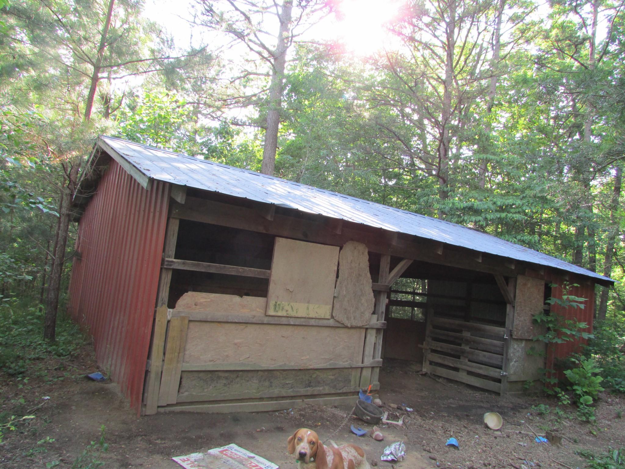 0 Dogtown Rd Property Photo - Gruetli Laager, TN real estate listing