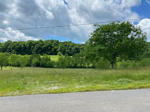 12 Johnson Hollow Rd Property Photo - Watertown, TN real estate listing