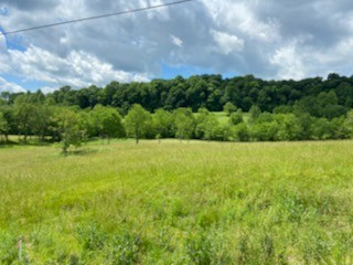 11 Johnson Hollow Rd Property Photo - Watertown, TN real estate listing