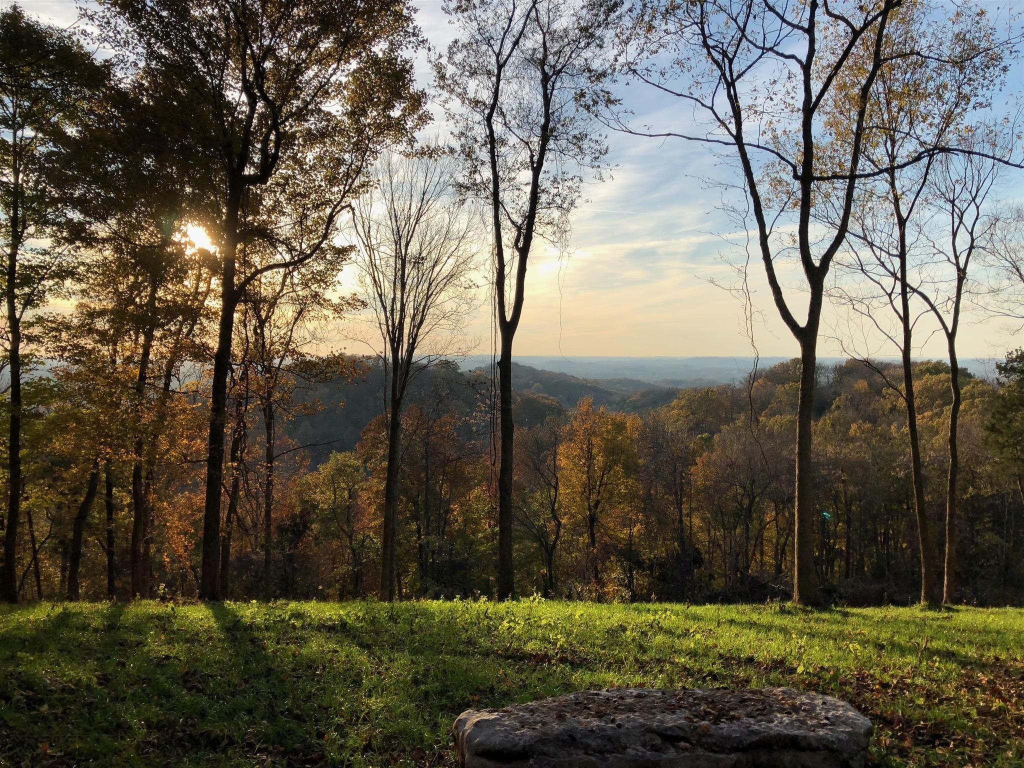5115 Vista Ridge Ln Property Photo - Thompsons Station, TN real estate listing