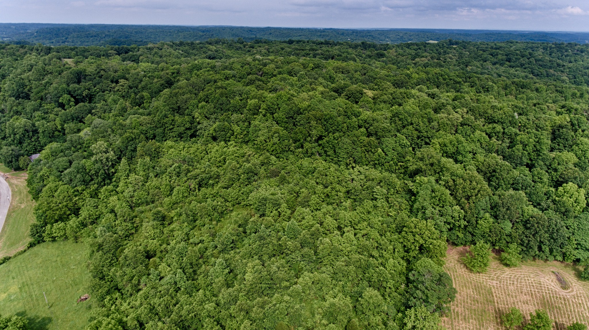 0 Bee Spring Road Property Photo - Dellrose, TN real estate listing
