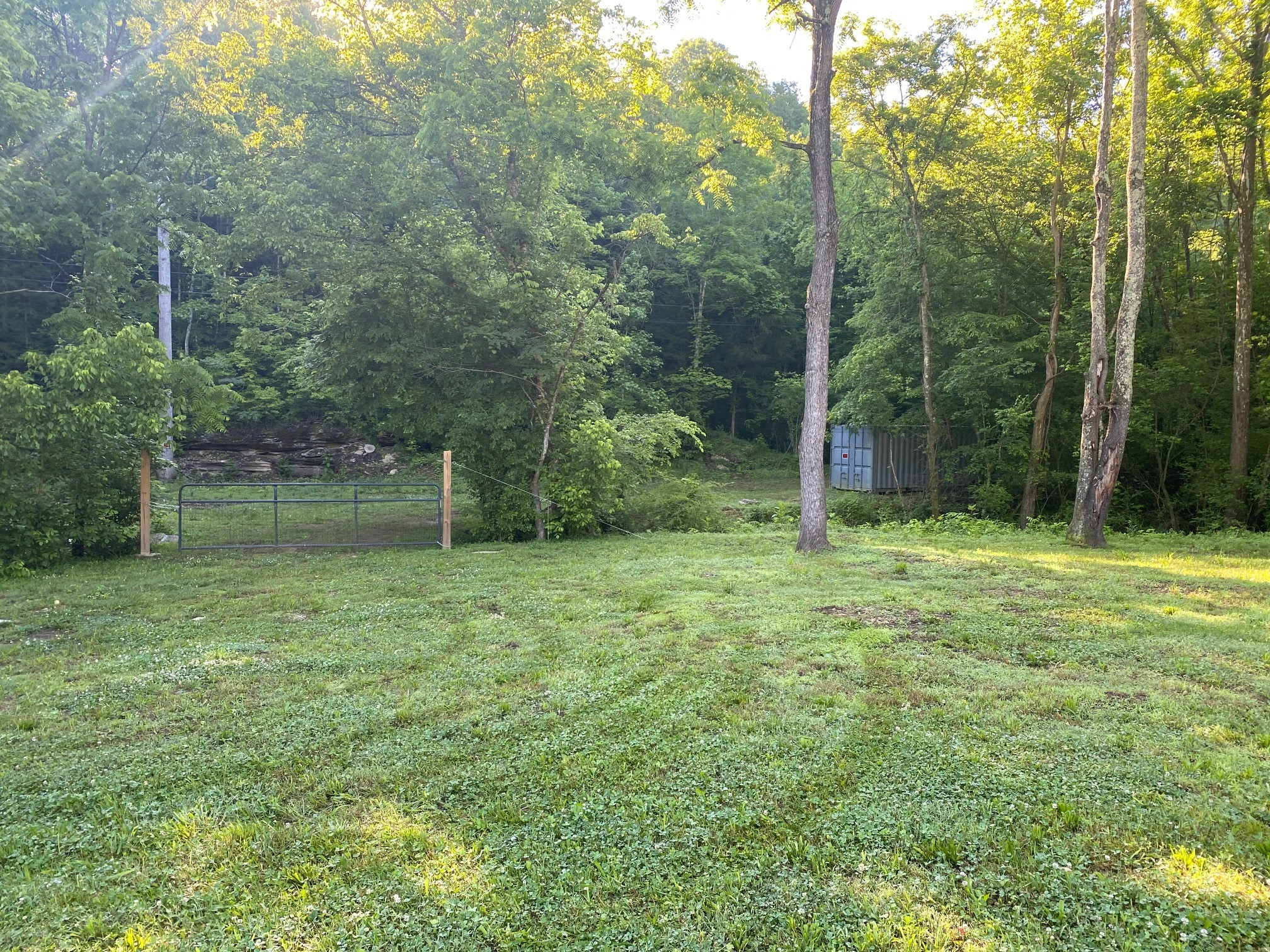 0 Minor Hill Hwy. Property Photo - Goodspring, TN real estate listing