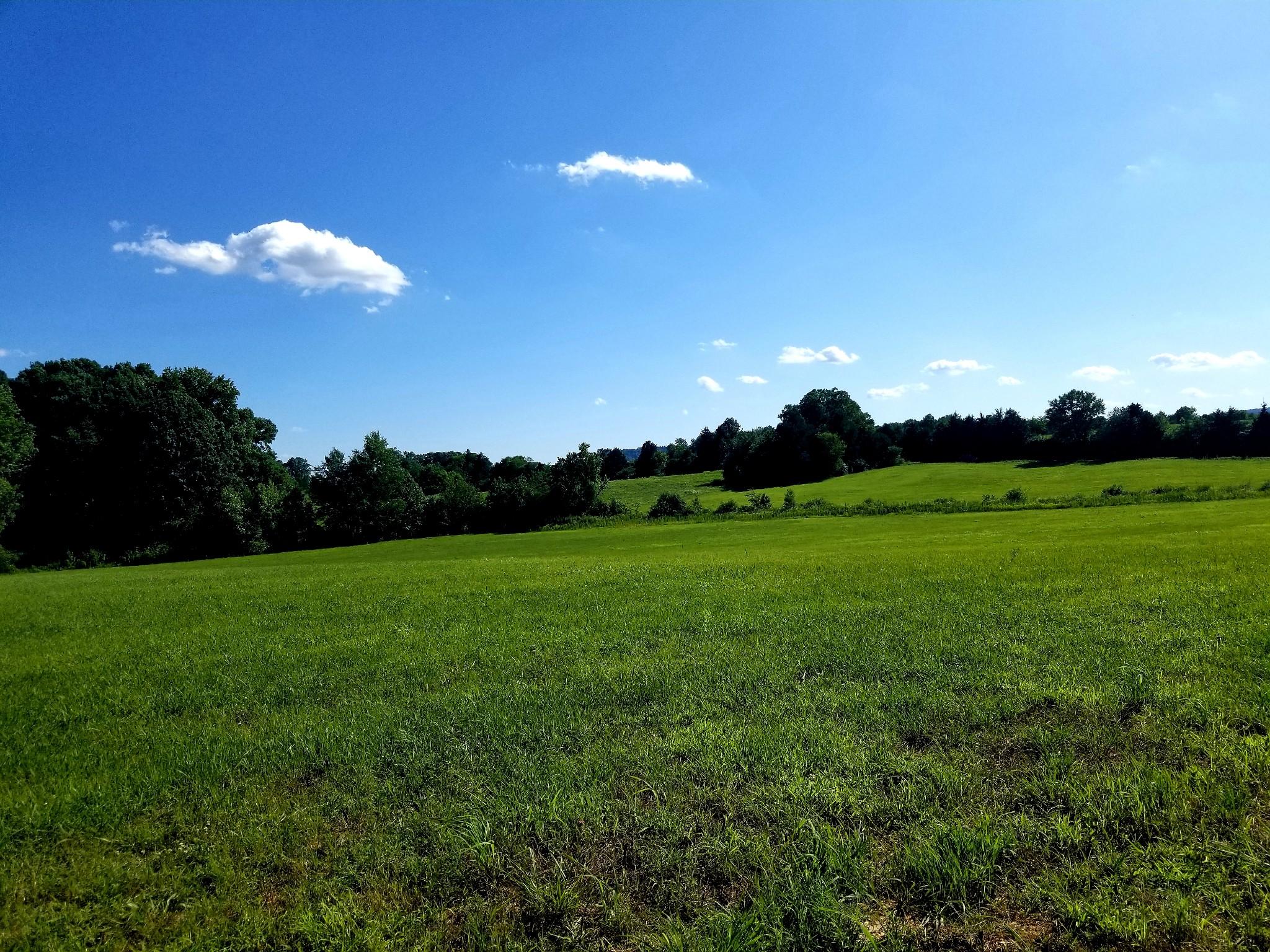1 Banks Pisgah Road Property Photo - Smithville, TN real estate listing
