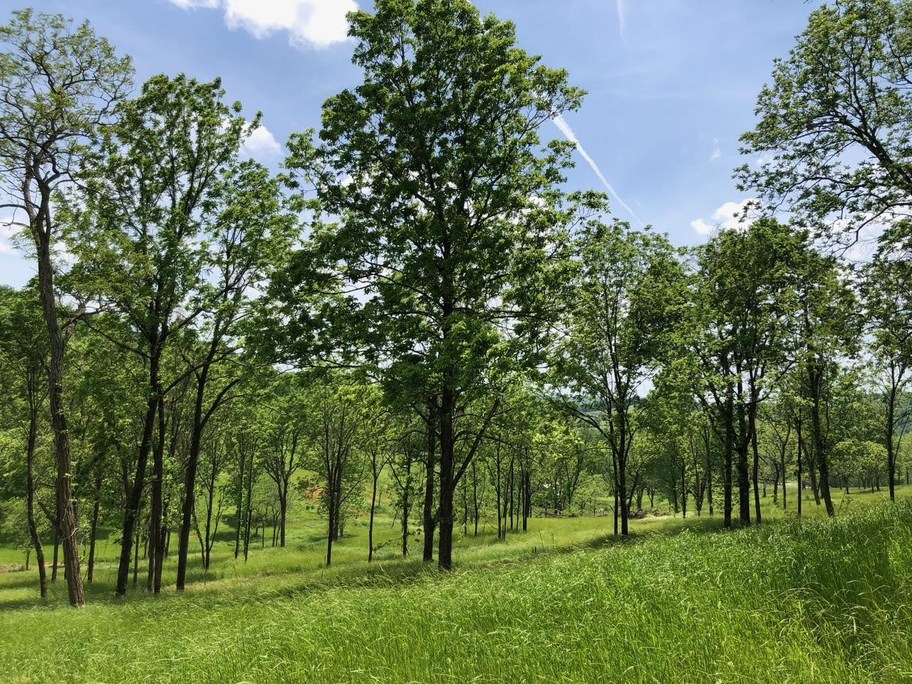 1054 Pleasant Valley Road Property Photo - Hartsville, TN real estate listing